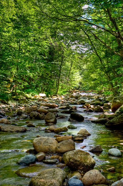 _dsc6100_1_2_3_4_gale-river.jpg