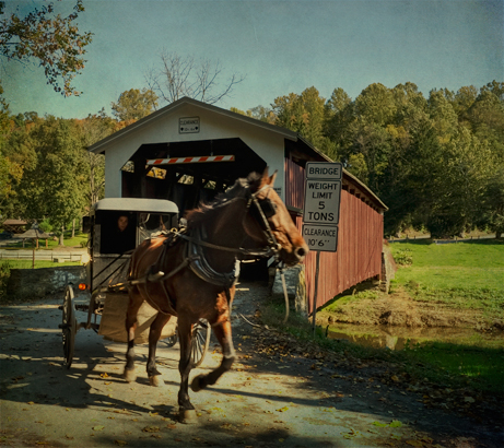 Horse drawn buggy and covered bridge
