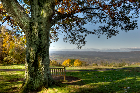 Dickey Ridge Shenandoah NP