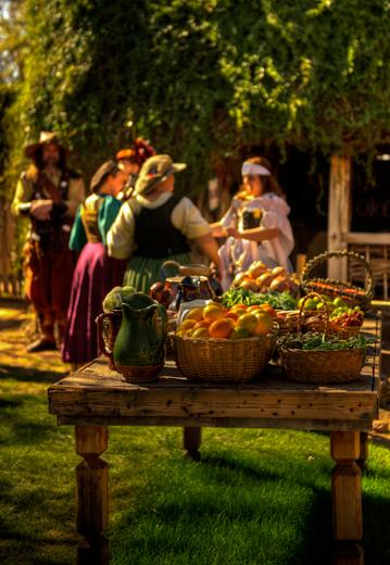 _dsc0902_renaisance-fair-crop.jpg