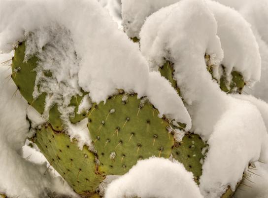 _dsc3485_6_7_8_9_sedona-snow.jpg