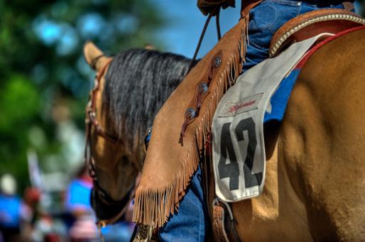 c_dsc7023_stampede-parade.jpg