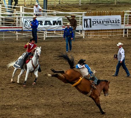 r_dsc7354-stampede-rodeo-crop.jpg