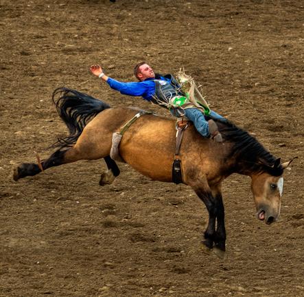 r_dsc7370_stampede-rodeo-crop2.jpg