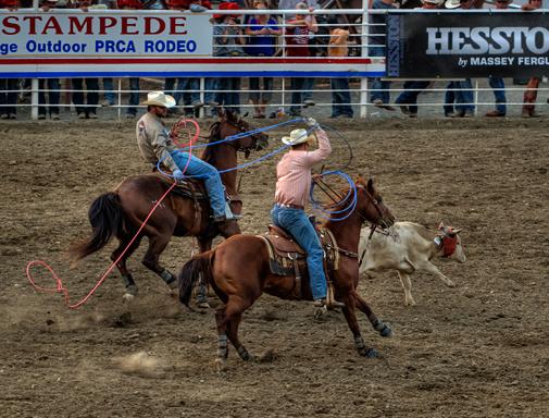 r_dsc7542_stampede-rodeo-crop.jpg
