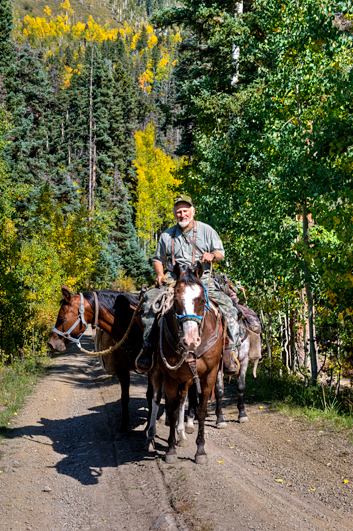 _dsc1337_owl-creek-pass-greg-iverson-pack-horses.jpg