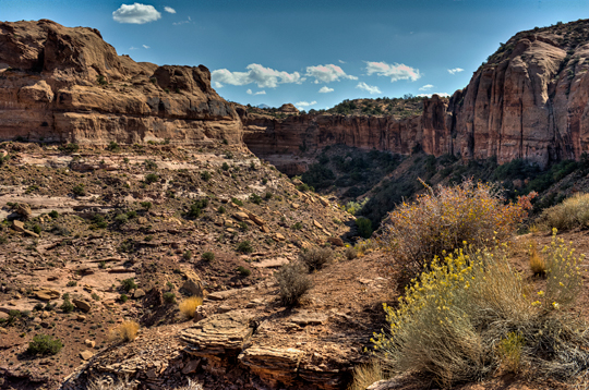 m_dsc3218_fin-n-things-negro-joe-canyon.jpg
