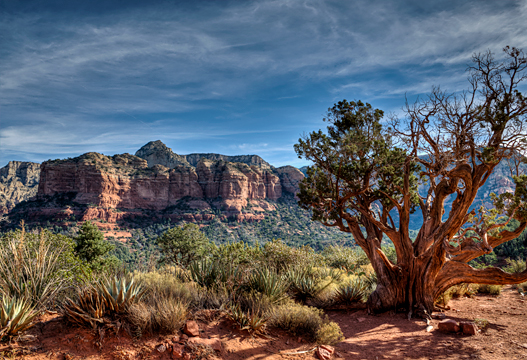 sed-dsc_0106_7_8_sedona-broken-arrow.jpg