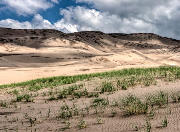DSC_6197_8_9_2013-07-16-Great-Sand-Dune-NP-crop-