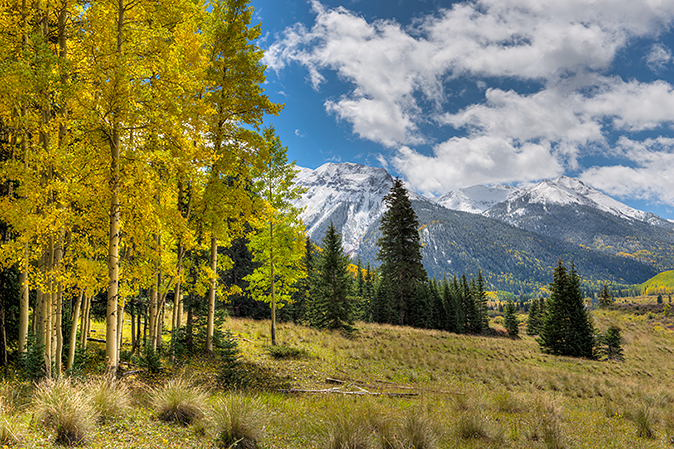Red Mountain with snow and aspen gold