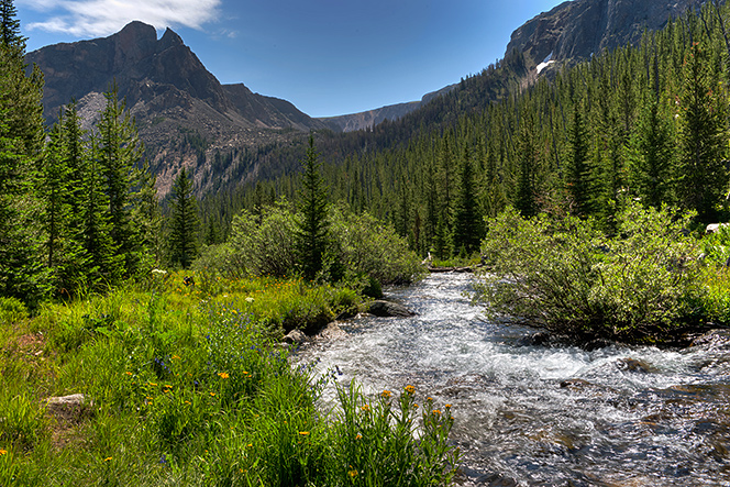 _DSC7573_4_5_2014-07-28-Custer-NF-Rock-Creek-wrm