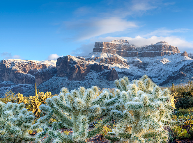 _DSC1203_4_5_2015_01_01-Superstitions-am-snow-crp